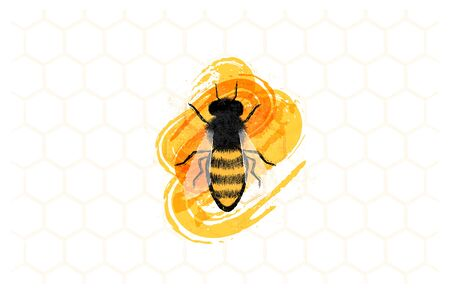 Illustration of honey bee on honeytombs. Designed for labels for honey products and more. Stok Fotoğraf