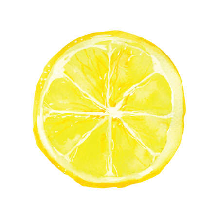 slice of lemon drawing by watercolor, hand drawn vector illustration Vettoriali