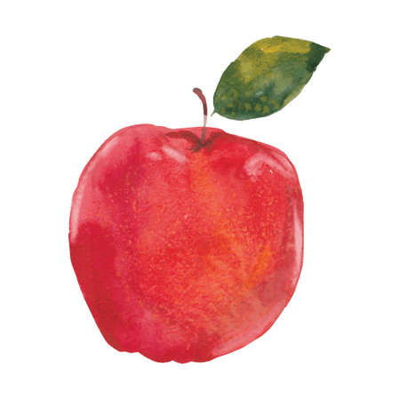 Watercolor illustration of red apple