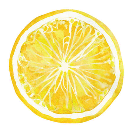 slice of lemon,  watercolor vector illustration