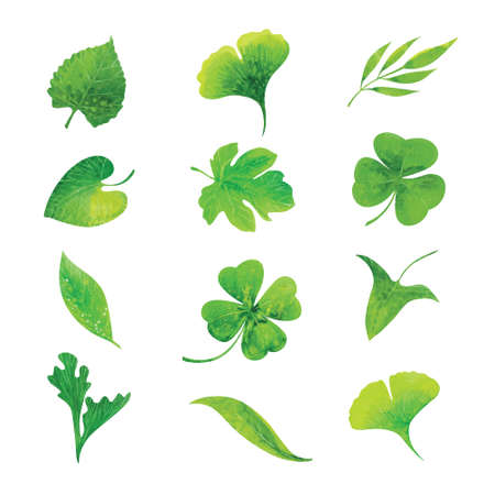 set of green watercolor leaves, hand drawn vector elements