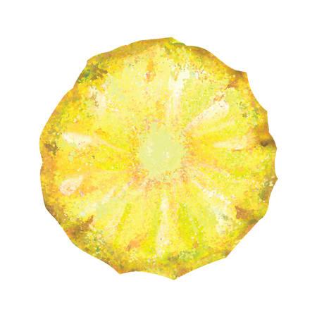 Watercolor pineapple . Vector hand drawn illustration  イラスト・ベクター素材