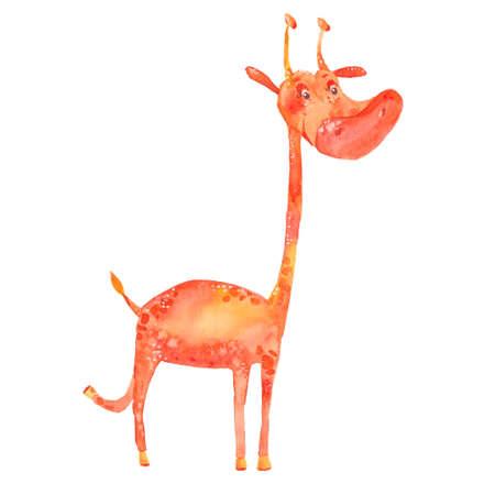 jirafa fondo blanco: ejemplo de la acuarela de una jirafa en un fondo blanco