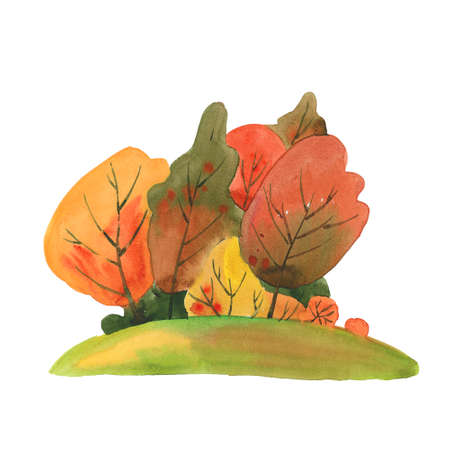 watercolor autumn forest