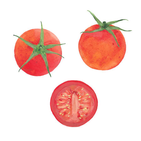 watercolor red tomatoes