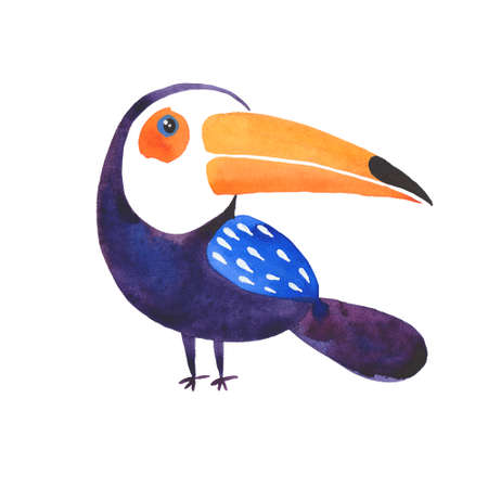 watercolor illustration of toucan