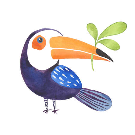 toucan with a branch 版權商用圖片