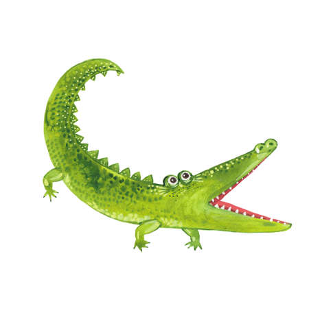 Toothy green crocodile. Illustration on white background
