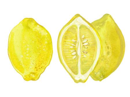 two whole lemons and a half, watercolor illustration on white background Reklamní fotografie
