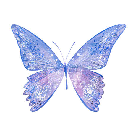 blue butterfly, watercolor illustration on white background
