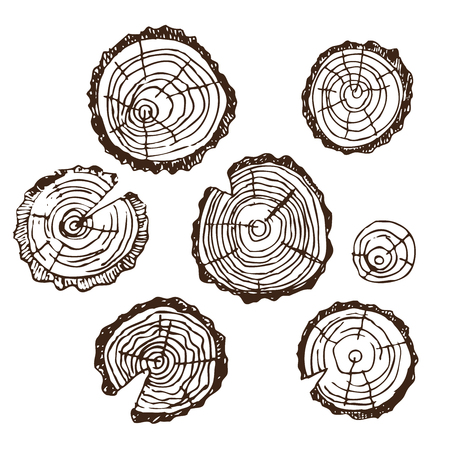 Wood cut, wood for design patterns, frames, backgrounds, for Russian bath for body hygiene. Set of accessories for bath, sauna. Hand drawing in sketch style. Isolated object on white background. Stock Illustratie