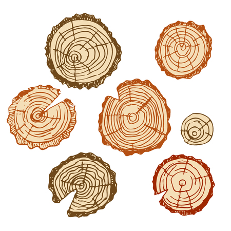 Wood cut, wood for design patterns, frames, backgrounds, for Russian bath for body hygiene. Set of accessories for bath, sauna. Hand drawing in sketch style. Isolated object on white background