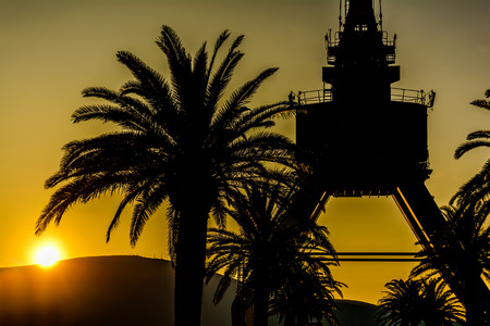 everyday scenes: Crane and Palm Tree in the sunset