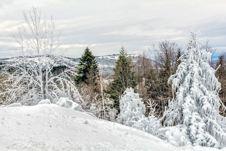 snow covered mountain: Snow covered mountain in Montenegro