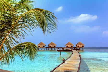 몰디브의 아름다운 방갈로와 해변