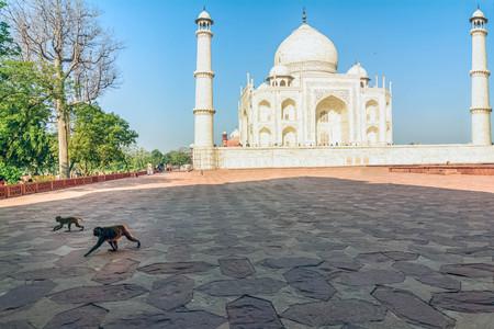 Taj Mahal, Blue sky, Travel to India