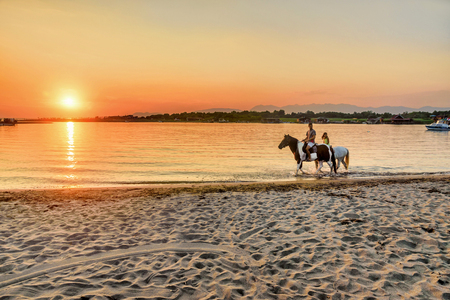 caballo de mar: Young people riding horses in the sunset by the sea on the island of Ada Bojana, Montenegro