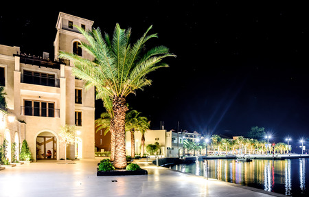 greenish blue: Palm trees and the buildings in the night lights in Marina Porto Montenegro, Tivat, Montenegro Stock Photo
