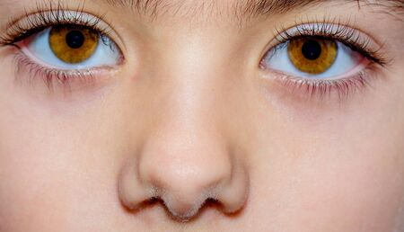 close up eyes: Macro close up of a little girls brown eyes