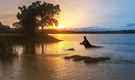 Hippopotamus  in the Nile river at sunrise at the Murchison Falls National Park in Uganda, Africa