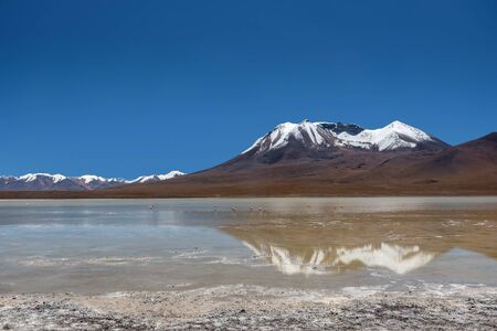 bolivian: Laguna Canapa in Altiplano a salt lake, Bolivia