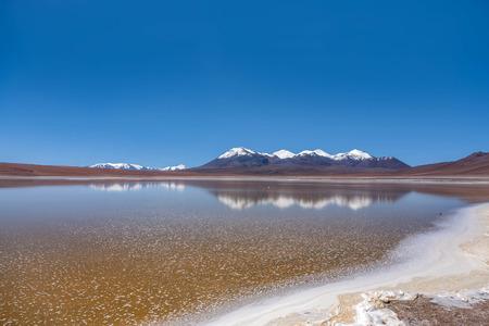 Laguna Canapa in Altiplano a salt lake, Bolivia