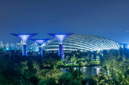 Illuminated Supertrees in Gardens by the Bay at night, Singapore 新聞圖片