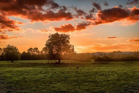 The landscape of the Movie Set and Farm, Matamata New Zealand Stock Photo