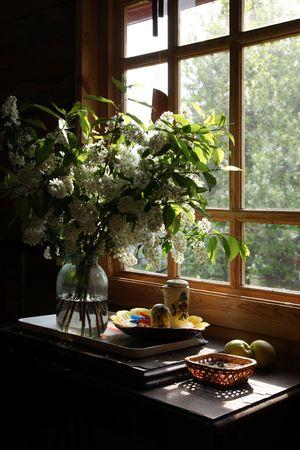 sill: a bouquet of flowering branches of a tree Stock Photo