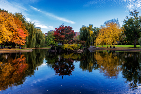 Pond in Boston Common Garden surrounded by colorful trees in fall season