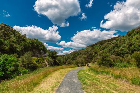 Trail in a beautiful colorful landscape of Waimangu Volcanic Valley park, Rotorua, New Zealand
