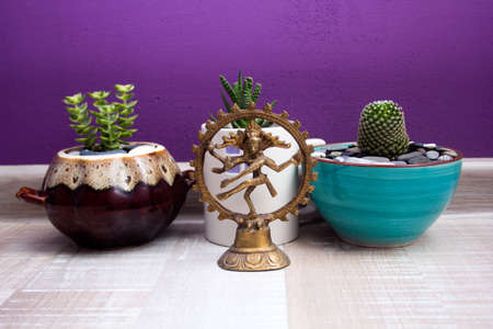 statue of Shiva Nataraja and succulents in ceramic pots on purple background wall.