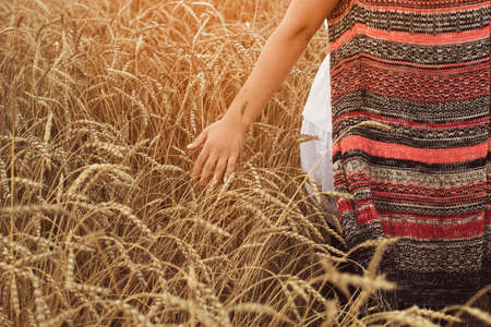 agronomist: Young woman walking through field and touches wheat