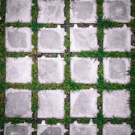 stock photo top view square tiles with green grass in the garden texture - Garden Tiles