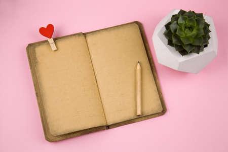 Ansicht von oben offenes Notizbuch mit Vintage-Grunge-Papier, Stoffnadel mit rotem Herzen, Bleistift und Sukkulente in Betontopf Draufsicht auf rosa Hintergrund on