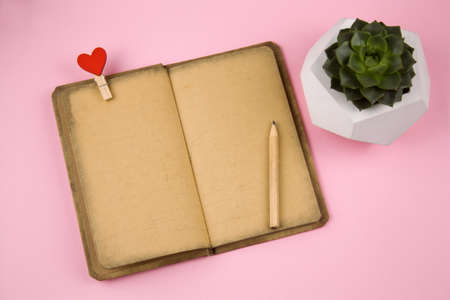 top view  open notebook with vintage grunge paper, cloth pin with red heart, pencil and succulent in concrete pot top view on a pink background