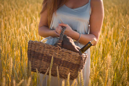 selective focus woman tanned skin,beautiful silver dress on a picnic on a rye field, basket with wine and glasses