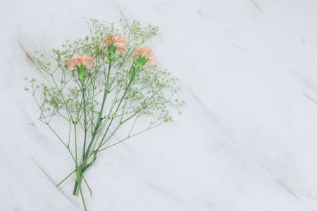 Gypsophila and carnation  flowers frametop view on a marble background copy space Stock Photo