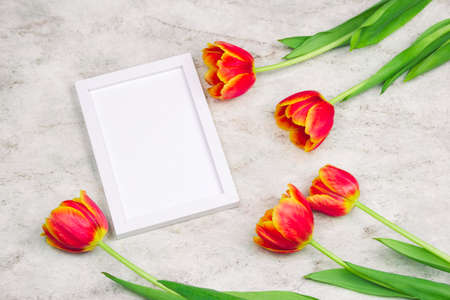 top view blank white frame and tulips frame on a marble background