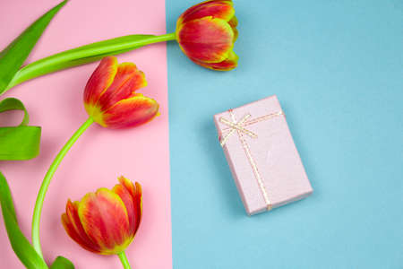 top view pastel pink gift box and red tulips on a pink and blue background, springtime festive flat lay Stock Photo