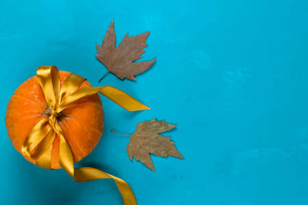 top view pumpkin decorated golden satin ribbon and maple leaves on a blue background, copy space Banco de Imagens