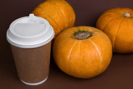 pumpkins and spicy pumpkin latte in a paper cup brown background