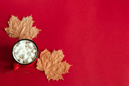 top view autumn maple leaves and cup with marshmallows copy space