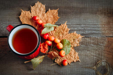top view autumn card with tea in a red cup, little apples and golden maple leaves on a wooden background