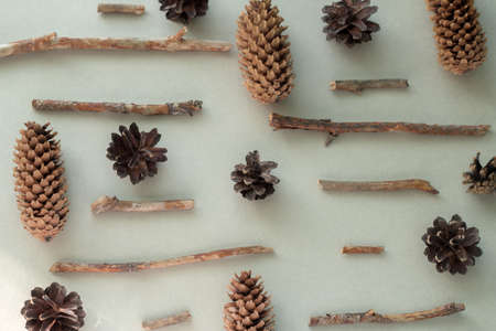 top view flat lay pine cones and wooden branches pattern on a gray background Imagens