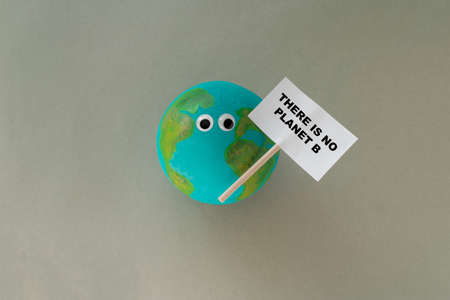 a small handmade model of planet earth with googly eyes holds a sign that says there is no planet b