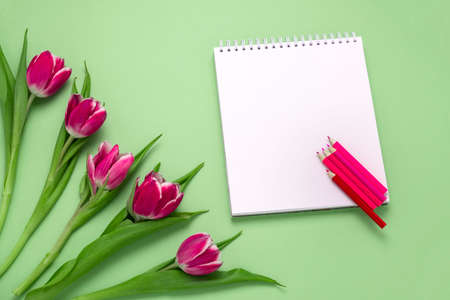 top view flat lay pink tulips and blank notebook mock up and pink and red pencils