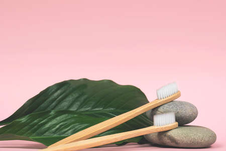 still life with bamboo toothbrushes, stones and green leaves on a pink background 写真素材