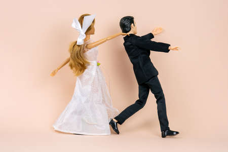 wedding dolls, the bride catches the escaping groom