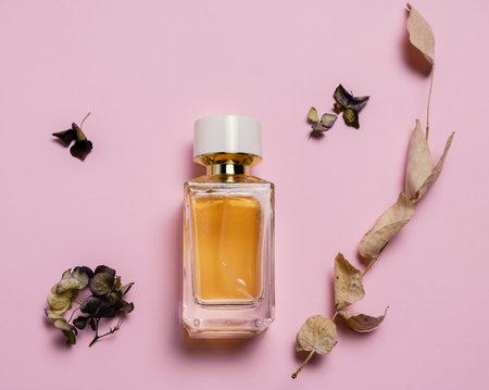 顶视图组成用干绣球花,玉树,分支和香水瓶在淡色桃红色背景。